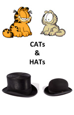 Cats and Hats