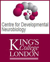 Logo2_Kings_College.jpg